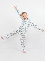 Детская хлопковая пижама для мальчика РВ 015, рр. 104-128, ВОЛ (Cornett)