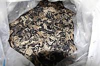 Древесный гриб Муэр сушенный целый