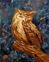 "Картина раскраска по номерам ""Загадочная сова"" набор для рисования"