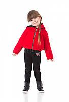 Детская куртка спортивная на меху JoJo