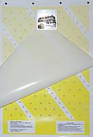 Клеевая пластина для мух, фото 1