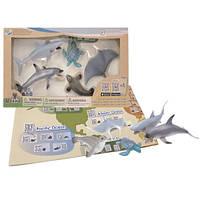 Детский обучающий игровой набор с QR-картой фигурки Обитателей Тихого Океана Wenno WPN1701
