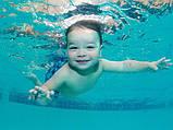 Многоразовые подгузники для плавания в бассейне рисунок Бабочки до 2 лет, фото 5