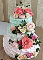 Лучший свадебный торт Омбре Мятно-розовый