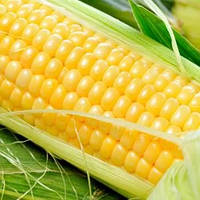 Добрыня кукуруза 20 шт. Леда Агро