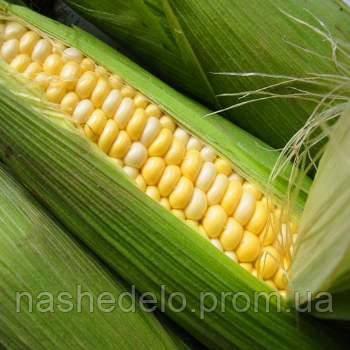 Кендл кукуруза 15 шт. Леда Агро