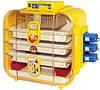 Novital Covatutto 162 Automatica бытовой автоматический инкубатор  для яиц