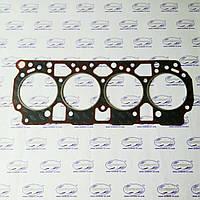 Прокладка головки блока цилиндров ГБЦ (50-1003020-02-03) с герметиком (Минск), Д-240 МТЗ