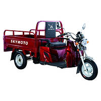 Трицикл Skymoto HERCULES -110 В