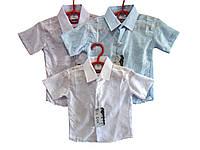 """Рубашка для мальчика """"Марлевка"""" короткий рукав на пуговках, уп. 6 шт., размеры: от 2 до 7 лет"""