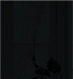 steklo black