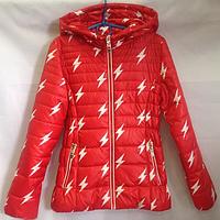Детская куртка весна осень Молния