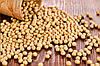 Главная причина задержки развития переработки сои