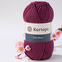 Kartopu Elite Wool 1723