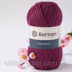 Kartopu Elite Wool 1723