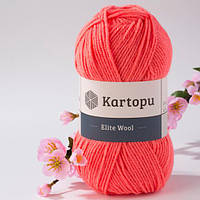Kartopu Elite Wool 1212