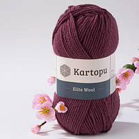 Kartopu Elite Wool 1707