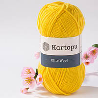 Kartopu Elite Wool 1321