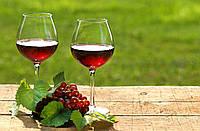 Вино красное сухое столовое, сделанное из винограда сорта Изабелла