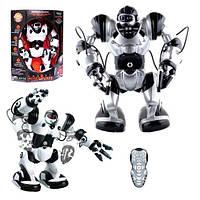 """Робот 28091 """"Robowisdom"""", 37 см (Y)"""