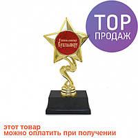 Статуэтка Золотая Звезда Гениальному бухгалтеру / Оригинальные подарки