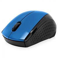 Мышь Wireless HP X3000 Cobalt Blue, USB, 1200 dpi, 2.4 ГГц, 1хAA