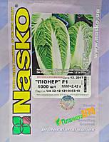 Семена капусты пекинской Пионер F1, 1000 семян, Nasko (Наско), Молдавия