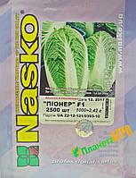Семена капусты пекинской Пионер F1, 2500 семян, Nasko (Наско), Молдавия