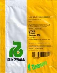 Семена капусты Этма F1 (калиброванные) 1000 семян, Rijk Zwaan