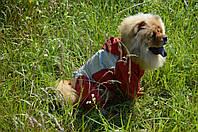 Комбинезон-дождевик для собаки на подкладке с капюшоном, фото 1