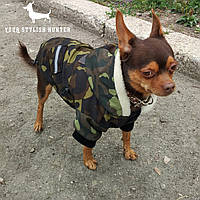 Одежда на маленькую собаку, куртка  Alpha