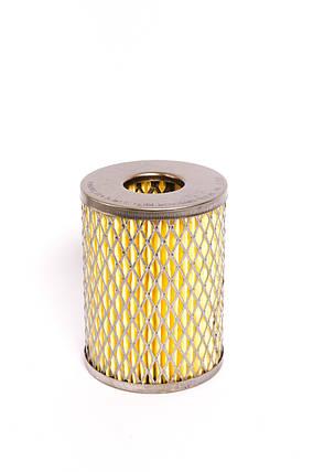 Фильтр топливный ПРОМБИЗНЕС РД-004, фото 2
