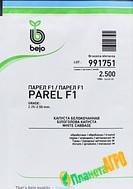 Семена капусты белокочанной Парел F1, 2500 семян, Bejo (Бейо), Голландия