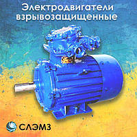 Электродвигатель взрывозащищенный 75 кВт 1000 об/мин АИММ 280 S6, 2ВР 3ВР 1ВАО ВАО ВАО2 ВА АИУ ВА ВРП взрывник