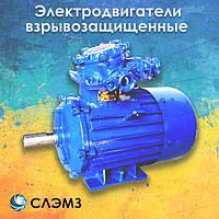 Электродвигатель взрывозащищенный 90 кВт 3000 об/мин АИММ 250 M2, 2ВР 3ВР 1ВАО ВАО ВАО2 ВА АИУ ВА ВРП взрывник