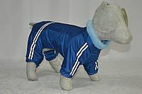 Комбинезон для собаки с мехом зимний