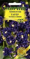 Аквилегия Тауер тёмно-синяя,подзимний посев, теневынослив.