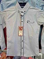 Рубашка для мальчика в расцветках 2308\3