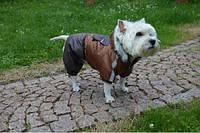 Комбинезон для собаки теплый Дуэт