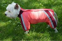 Комбінезон для собаки на синтепоні Зоря теплий, фото 1