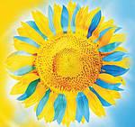 Поздравление с главным государственным праздником Украины