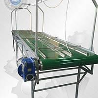 Ленточный транспортер для сортировки орехов