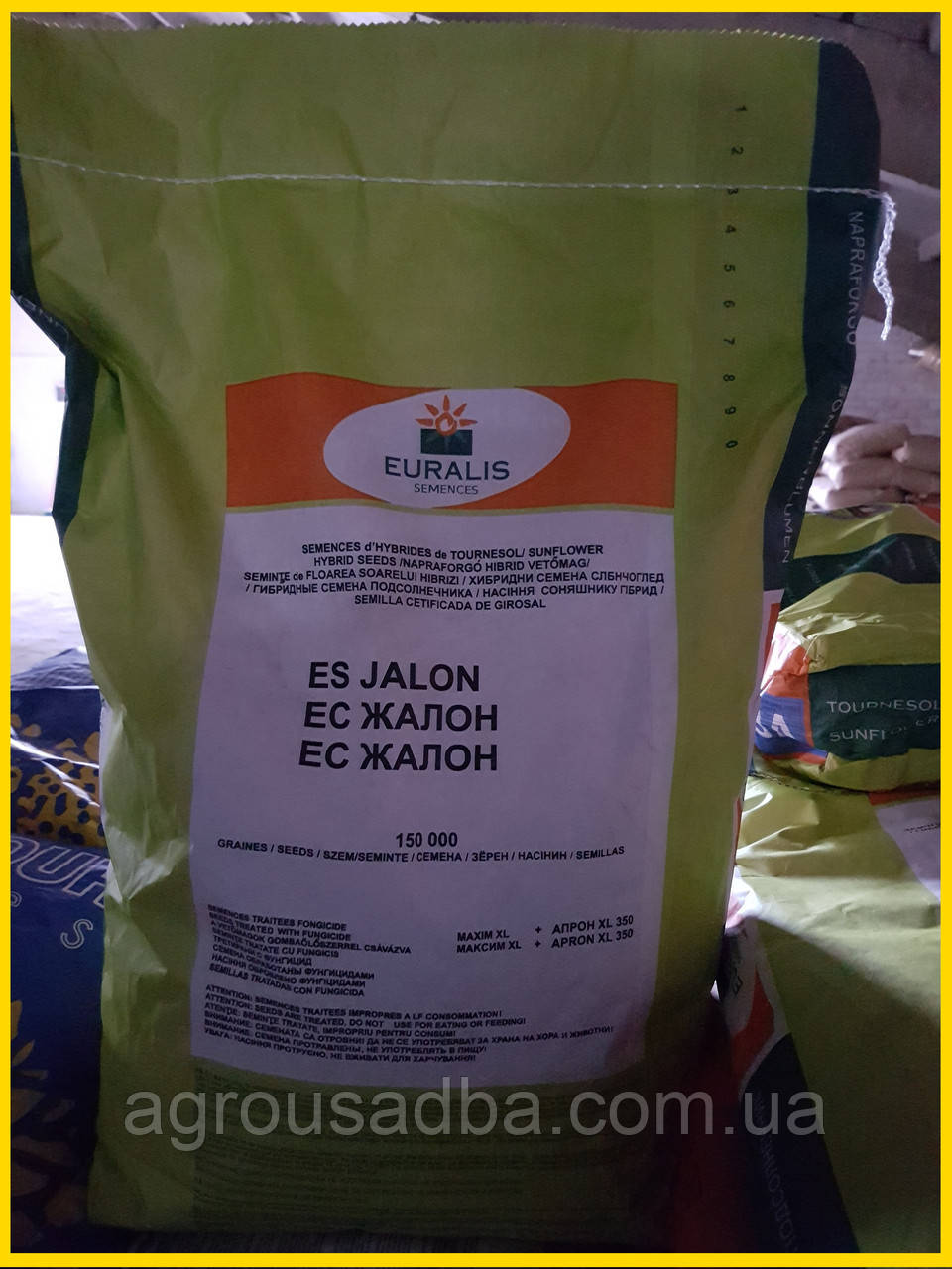 Семена подсолнечника Жалон - Евралис