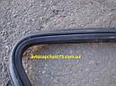 Уплотнитель заднего стекла Газ 3110, Газ 31105, Газ 2410, 24, 3102 (производитель Ярославль , Россия), фото 3