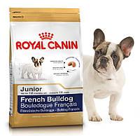 Корм для щенков породы французский бульдог Royal Canin French Bulldog Junior