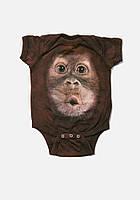Детский бодик MOUNTAIN (USA) - BIG FACE BABY ORANGUTAN