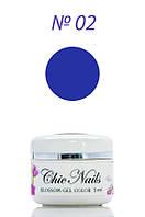 Chic Nails - Гель-лак Акварель - №02 фиолетовый