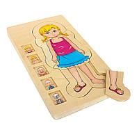 Деревянный пазл Legler 3+ Анатомия девочка 5814