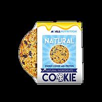 AllNutrition Natural Cookie 10х60 g
