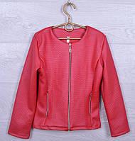 """Куртка детская демисезонная """"Кэти"""" для девочек. 116-140 см. Красная. Оптом."""